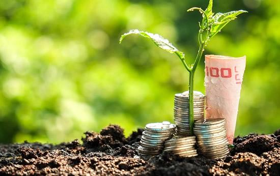 Cours Entreprises et développement durable, en ligne (avec certificat)