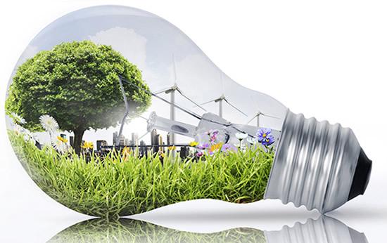 Cours Innovation durable, en ligne (avec certificat)